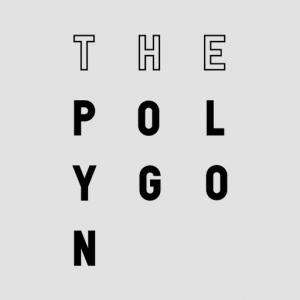 Polygon-1-300x300