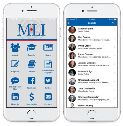 MLI-screenshot-for-website